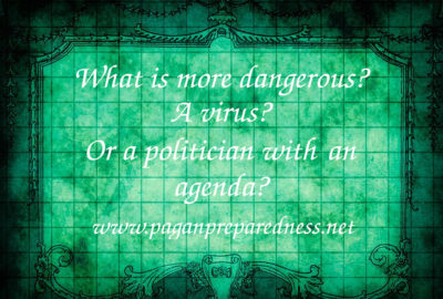 What is more dangerous- virus or politician